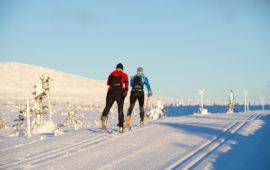Лыжная беговая трасса